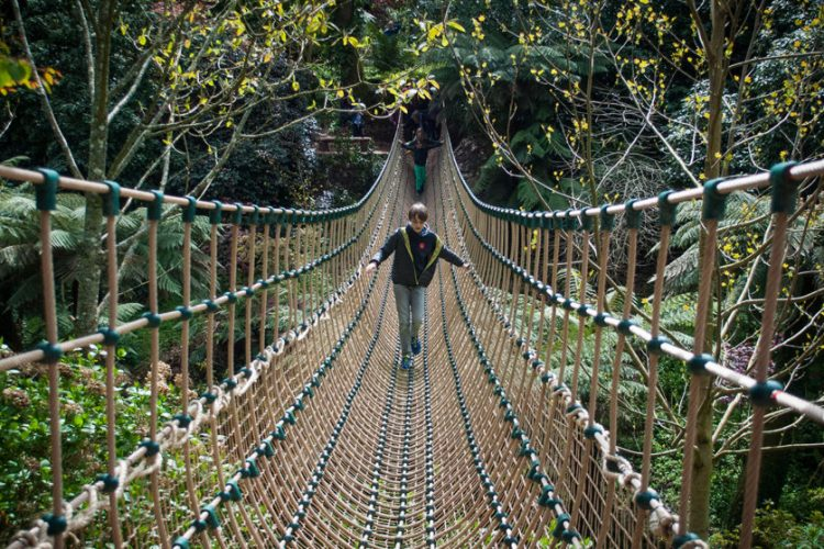 the-lost-gardens-of-heligan-cornwall-burmese-rope-bridge